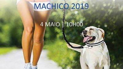 Dog Trail de Machico: Inscrições abertas para a IIIª edição